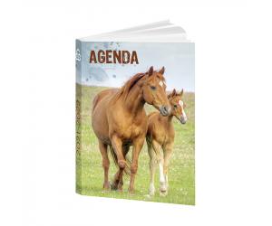 agendas papagrdccheval22 0