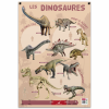 posters pedagogiques pappostdinosaures 0 768x768