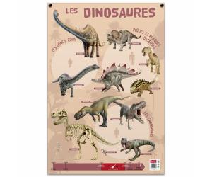 posters pedagogiques pappostdinosaures 0 768x768