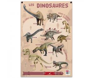 posters pedagogiques pappostdinosaures 0