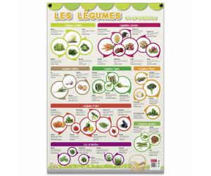 posters pedagogiques pappostlegumes 0 768x768